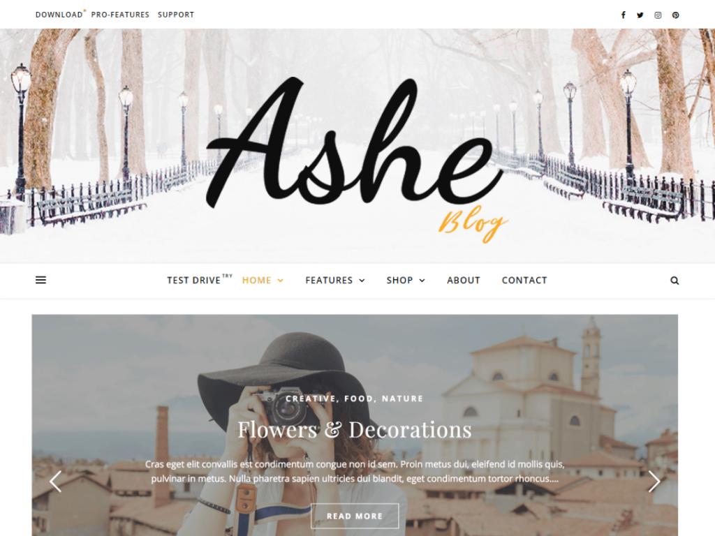 ashe wordpress theme 2020